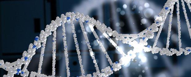 Mormo di Paget: ecco i geni delle malattie delle ossa