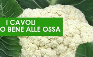 cavoli_ossa