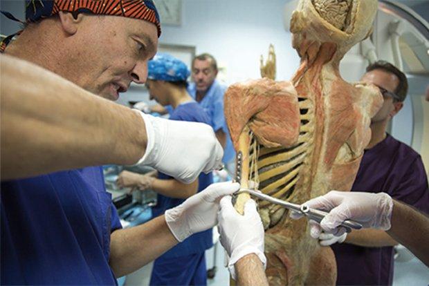 """""""Real Bodies"""": operato d'urgenza per frattura uno dei corpi della mostra"""